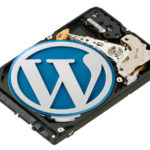 wordpress-theme-wasting-storage